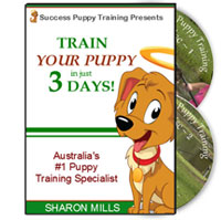 Success Puppy Training DVD
