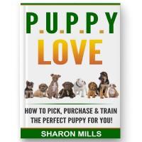 Puppy Love by Sharon Mills