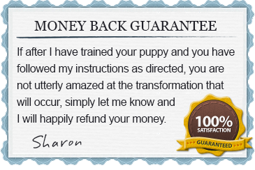 Puppy Training Money Back Satisfaction Guarantee