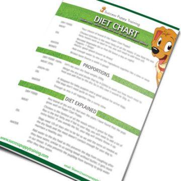 Puppy diet chart