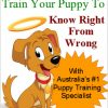 How to train your puppy to know right from wrong