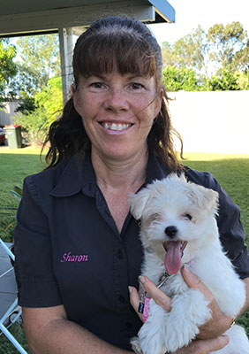 Sharon Mills Queensland's Best Puppy Trainer