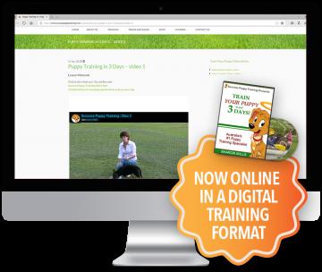 Puppy Training Online