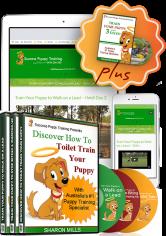 online puppy training course