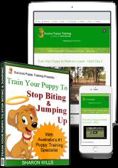 Stop Biting Puppy Training